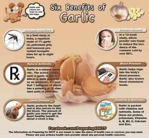 infografica aglio benefici