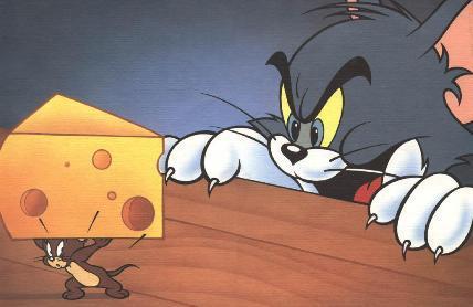 topi mangiano formaggi
