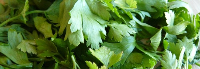 ricetta salsa verde