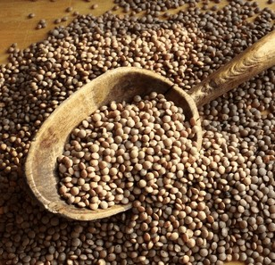 lenticchie tradizione cucina curiosità storia