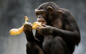 sbucciare banana