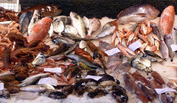 pesce di stagione calendario