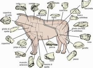 Taglio carne vitello manzo